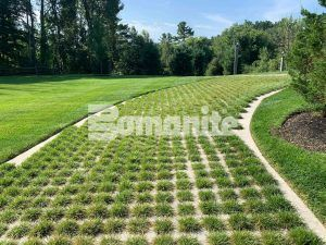 Finished beautiful expansive view of Bomanite Grasscrete Pervious Concrete Systems using Partially Concealed of an tradesmen driveway at an Essex county project.