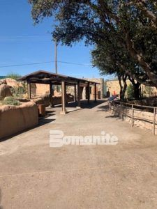 Long view of entrance with native desert trail composed of a Bomanite Natural Aggregate Concrete Finish at the El Paso Zoo Chihuahuan Desert Exhibit installed by Bomanite Artistic Concrete & Pools.